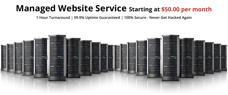 Website Hosting and Maintenance